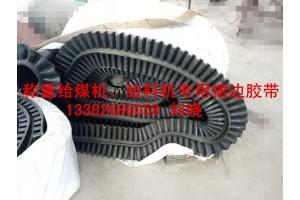 环型裙边阻燃皮带F55给煤机给料机专用无接头胶带