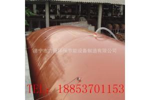 陕西红泥沼气池安装、家用养猪场200立方沼气池厂家及报价