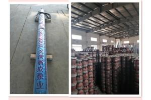 天津耐高温大型抽水泵-大功率抽水泵(名牌)厂家销售